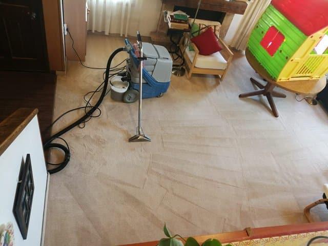 1ניקוי שטיחים מקיר לקיר בתל אביב